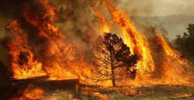 numerosi-incendi-negli-ultimi-giorni-immagine-repertorio-3bmeteo-78816.jpg